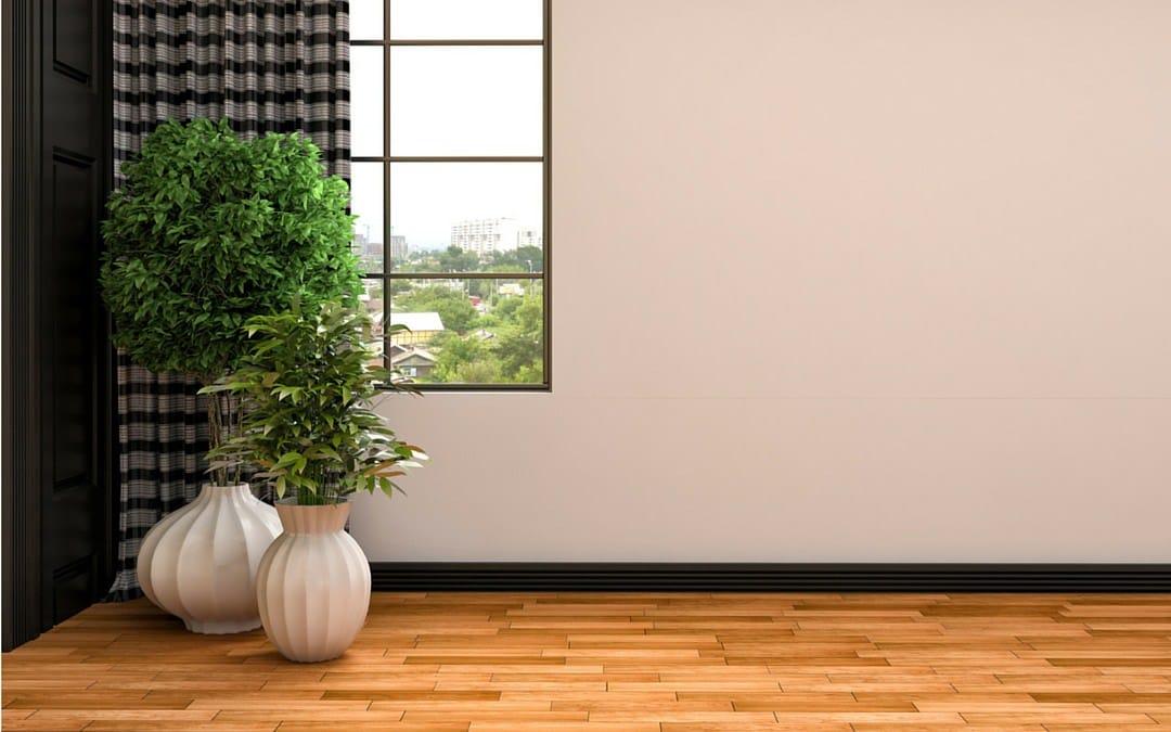 Pots de plantes : le minimalisme en décoration !