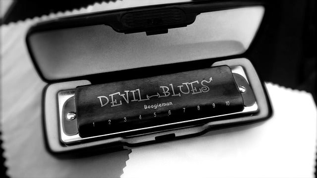 Les harmonicas diatoniques sont parfaits pour le blues